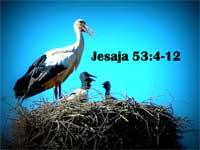 Jesaja53 4-12